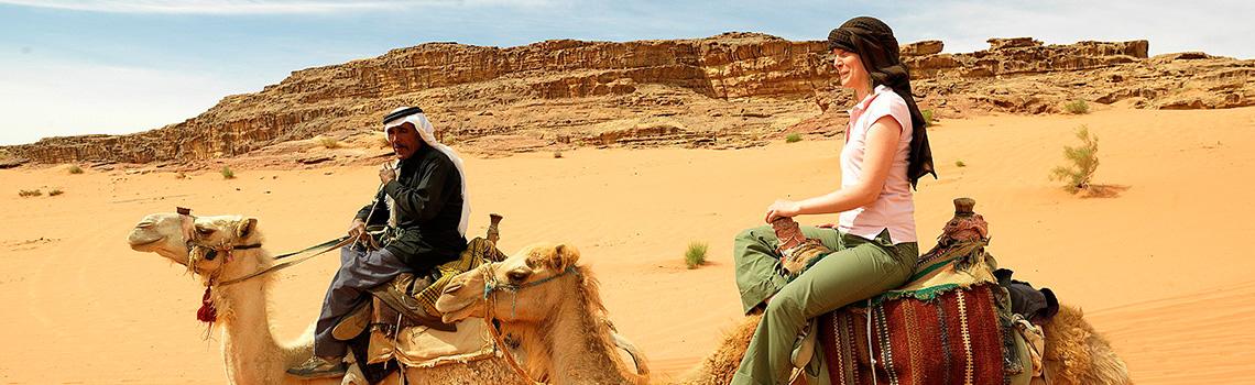 En los camellos en Egipto