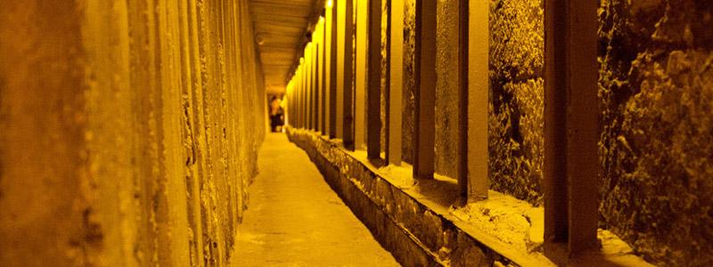 Los tuneles del muro de David